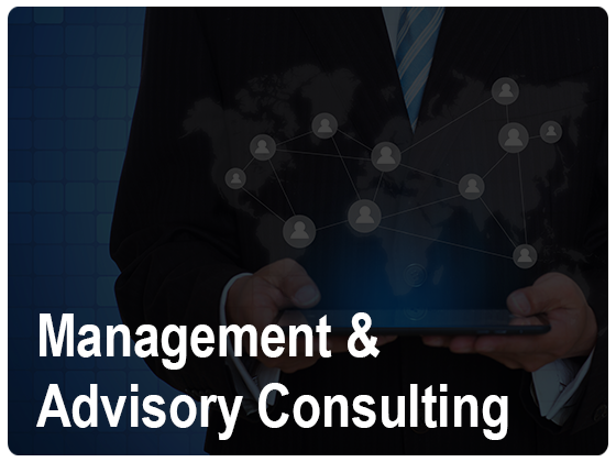 Management Advisory Consulting Services
